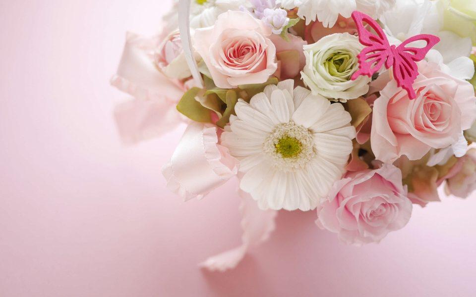 卒業する先輩にあわせた花言葉で贈る花を選ぼう