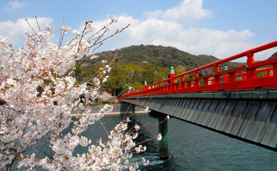 京都駅から20分で、世界遺産をめぐる卒業旅行「宇治」